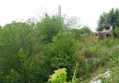 руины рядом с поселочком