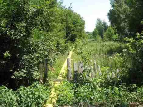 В Запанском бросают свои огороды