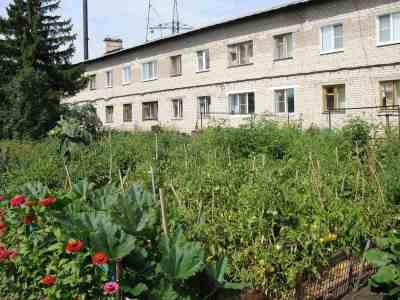 В Самаре помидоры собирают из окна кухни