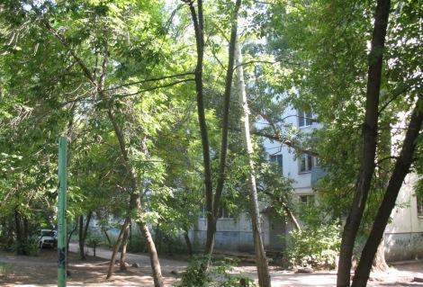 где-то в этих дворах на Партизанской он и жил