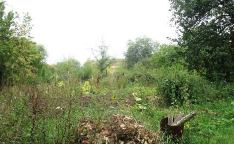 жители Очистных видят немного: огород в чаще