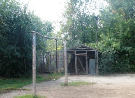 голубятня в 5 поселке Киркомбината