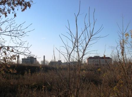 завод Рейд с набережной, справа под красной крышей - гостиница СОКа