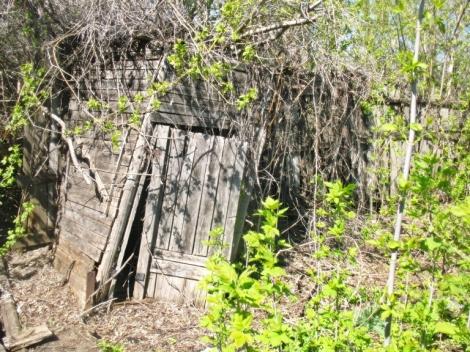 остатки дачных туалетов