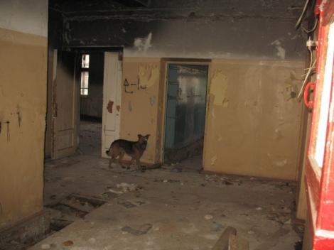 такими с Евгением Синюковым мы увидели руины детского садика в Толевом после пожара