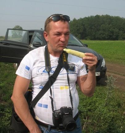 проверка урожая кукурузы