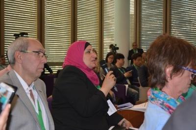 представительницу Египта интересовала связь социальных вопросов с энергетикой