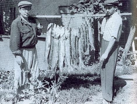 Панов на рыбалке за Волгой 1956