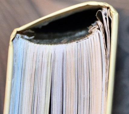 грошовый переплет дорогущей книги