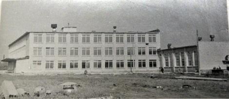 строительство школы 119