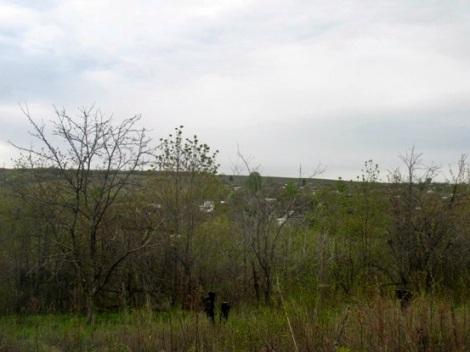 Кошелев придет с холма