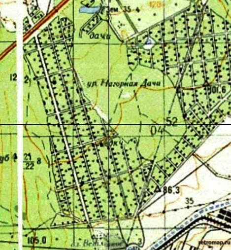 карта 1970 года, лес до Ракиты