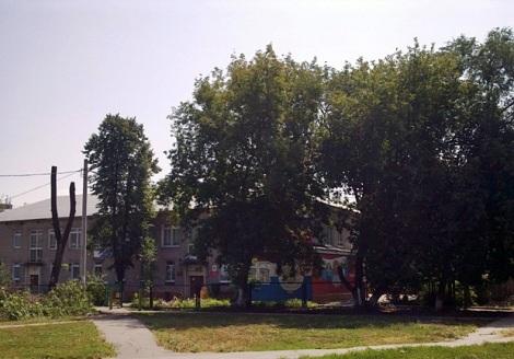 в садике, котором разместилась школа 170 зелень тоже осталась