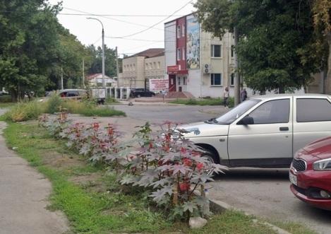 на Чернореченской